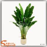 Pianta di banana artificiale di plastica delle piante di banane della decorazione domestica