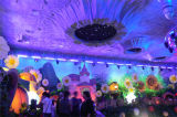 Fern252pcs RGB LED Wand-Unterlegscheibe-Licht für Stadiums-Beleuchtung