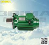 0.75kw elektrische Kraan Aangepaste Motor met Buffer voor het Vervoer van het Eind (BM-100)