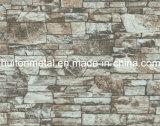 Bobina de aço do teste padrão velho do tijolo