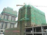 Heißes Verkauf HDPE Aufbau-Gestell-Sicherheitsnetz für Gebäude