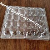 Plateaux en gros Chine d'oeuf de caille d'animal familier d'espace libre d'emballage d'oeufs 24 trous