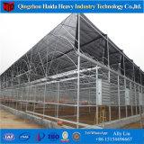 Hydroponicシステムが付いている原価のVenloの低いガラス温室