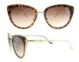 주문 로고 형식 Sunglass 도매 극화된 Sunglass 렌즈