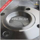 O aço inoxidável de ASME rosqueou/flange parafusado (YZF-F196)