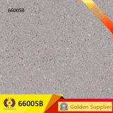 и пол отполированные 60X60 застекленные стена плитки мрамора фарфора (66002D)