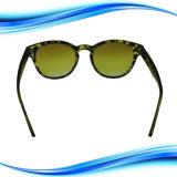 Lentille de Revêtement polarisé pilote articulée Lunettes de soleil pour Hommes Femmes