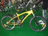 Electric Mountain Bike (HQL-EMB04 )