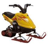 Scooter de neige (SS80)