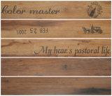 tegels van de Vloer van de Steen van 150X900mm de Houten Ceramische Verglaasde