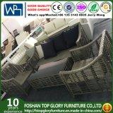 Современный открытый плетеной/удобный диван для отдыха садовая мебель (TG-6009)