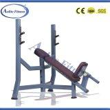Banco/della pendenza strumentazione dell'interno di forma fisica/strumentazione costruzione di corpo