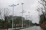 Luz híbrida solar do diodo emissor de luz do excitador dois da luz de rua do vento