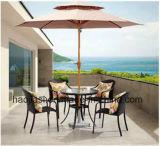 屋外の/Rattan/庭/テラス/ホテルの家具の藤の椅子の&Tableセット(HS1001C&HS6076DT)