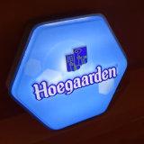 Hotel em acrílico personalizada de publicidade exterior da placa de Sinal do LED