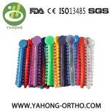 Ligadura de ortodoncia elástica Corbata Tie