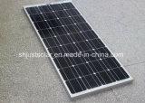 Mono painéis solares alemães da qualidade 165W para o mercado de Maurícia