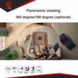 CCTV 720p WiFi/無線黒いパノラマ式IPのウェブカメラ