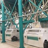 Alta qualità della pianta del laminatoio del mais del fornitore 100t della Cina