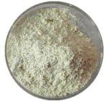 製造の供給の自然な高い純度のSophoraのJaponica Genistein 98%の粉
