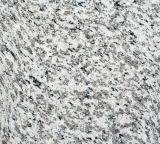 Granit blanc de la peau de tigre Paving Stone Tiger Stripe dalle de granit