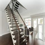 Escalera recta/escaleras de la barandilla de cristal de madera de la pisada para la venta