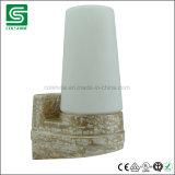 E14 imperméabilisent la lampe de sauna de lumière de sauna de porcelaine