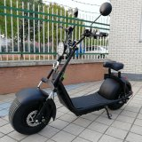 リチウム電気オートバイ1000Wの脂肪質のタイヤのHarley EECは証明した
