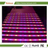 El aparejo de crecimiento de LED con 12 lámparas de crecer