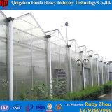 Низкая стоимость/высоко парник поликарбоната тоннеля аграрный для овощей
