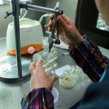 1.56 Obiettivo ottico a coperchio piatto grigio fotocromico di Hc