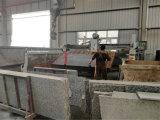 Tagliatrice di pietra automatica per le mattonelle del granito di Sawing//controsoffitti di marmo