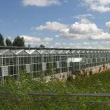 Стальная рама из поликарбоната (PC) лист выбросов парниковых газов с высоким качеством и благоприятных цен на овощи растущее