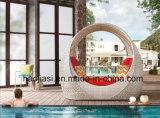 屋外の/Rattan/庭/テラスのホテルの家具の藤のラウンジチェア(HS 1029CL)