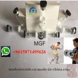 MGF 2mg/Vial; injizierbarer MGF-Puder-Gewinn-Muskel 12020-86-9 des Peptid-5mg/Vial