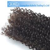 Волосы Кении ангелов Afro Remy 4c Kinky курчавые людские соткут