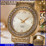 Вскользь wristwatch способа повелительниц нержавеющей стали (WY-P17007C)