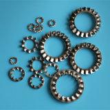 DIN6798A-M22 en acier inoxydable de la rondelle de blocage dentelée externe