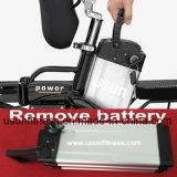 Bike дешевой складчатости электрический и электрический велосипед с извлекают батарею