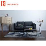 Muebles del diseño determinado del sofá de la tela de Seater del contemporáneo 2 para la sala de estar