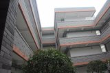 Migliori mattonelle innovarici Anti-Acid della parete del materiale da costruzione per rinnovamento