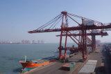 広州からのホーチミン市への信頼できる海の貨物運送業者