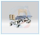 Lijst van de Schuine stand van de Capaciteit van Bariatric 500kg de Elektrische
