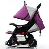 3 Farben-erhältlicher Baby-Spaziergänger für Jahreszeit Using den Fabrik-Onlineverkauf