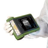 Varredor portátil veterinário do ultra-som (SonoScan A10V)