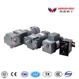 110V 220V 380V AC 6W 60mm 기어 모터