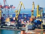 Compagnia di spedizioni certa a Xiamen/Guangzhou/Shenzhen/Hong Kong
