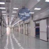 Conservazione frigorifera professionale di temperatura insufficiente per il montone