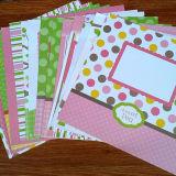 Bloco cor-de-rosa do papel de X12 Scrapbooking do projeto 12 do teste padrão do bebé
