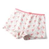 جديدة طبعة يضيف تصميم إنحناء أطفال ملبس داخليّ بنت [بنتي] مع [إك] إجازة